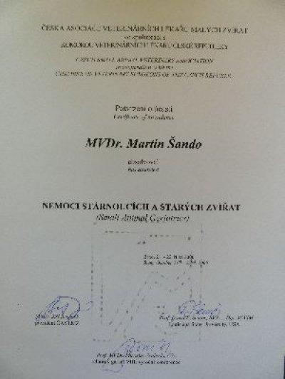 certifikat11