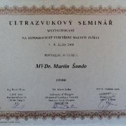 certifikat13
